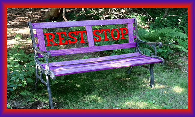 Rest.Stop.Bench - Painted Purple & Red for World Alzheimer's Month & Day